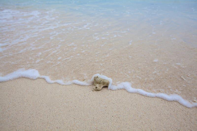 Fondo abstracto del coral en la playa arenosa con las ondas suaves imágenes de archivo libres de regalías