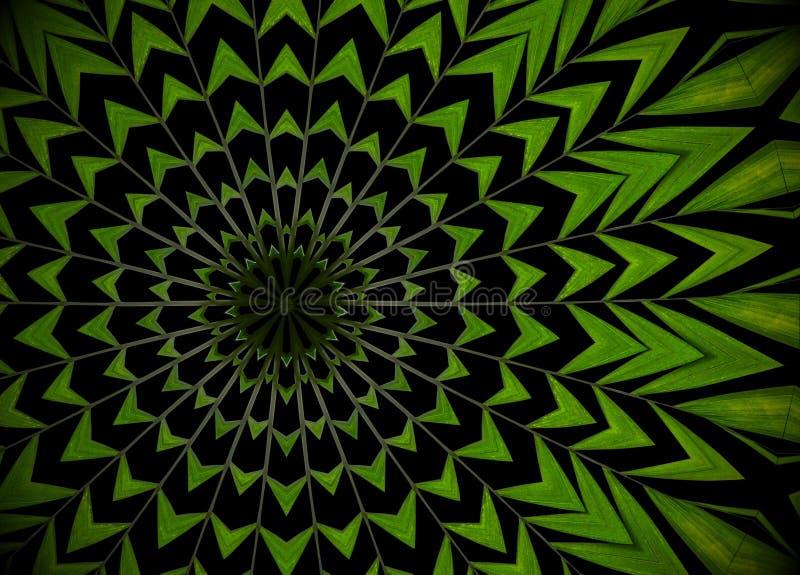 Fondo abstracto del verdor, hojas de palma con el effe del caleidoscopio ilustración del vector