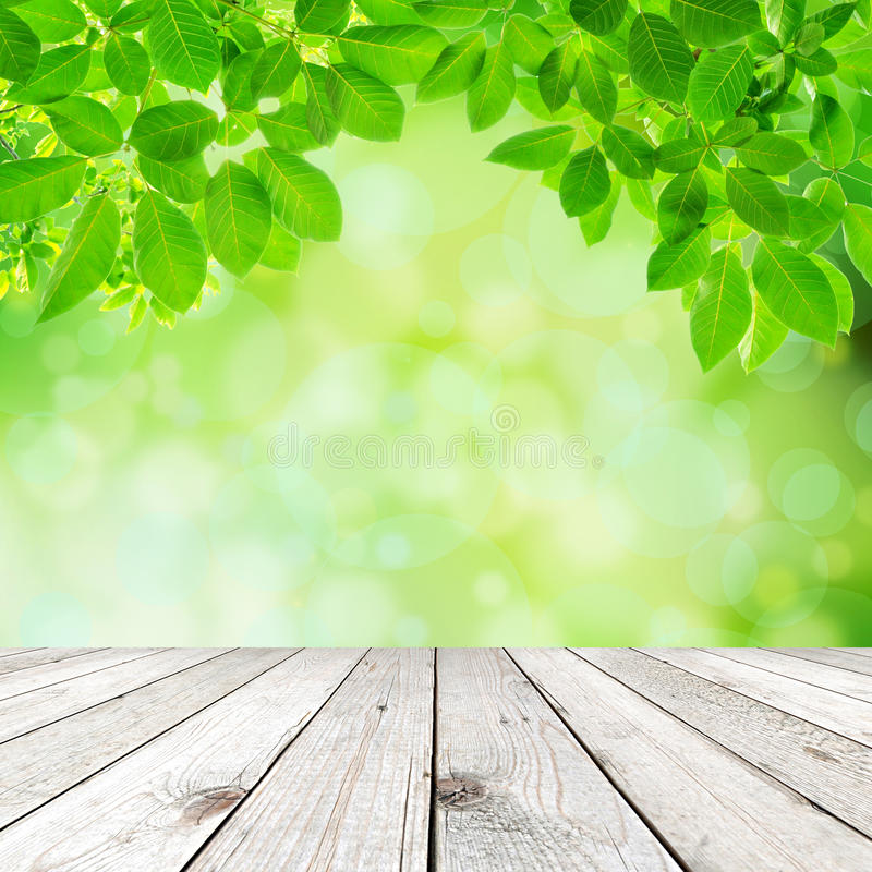 Fondo abstracto natural verde foto de archivo libre de regalías