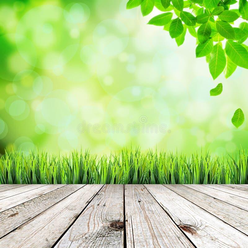 Fondo abstracto natural verde imagen de archivo libre de regalías