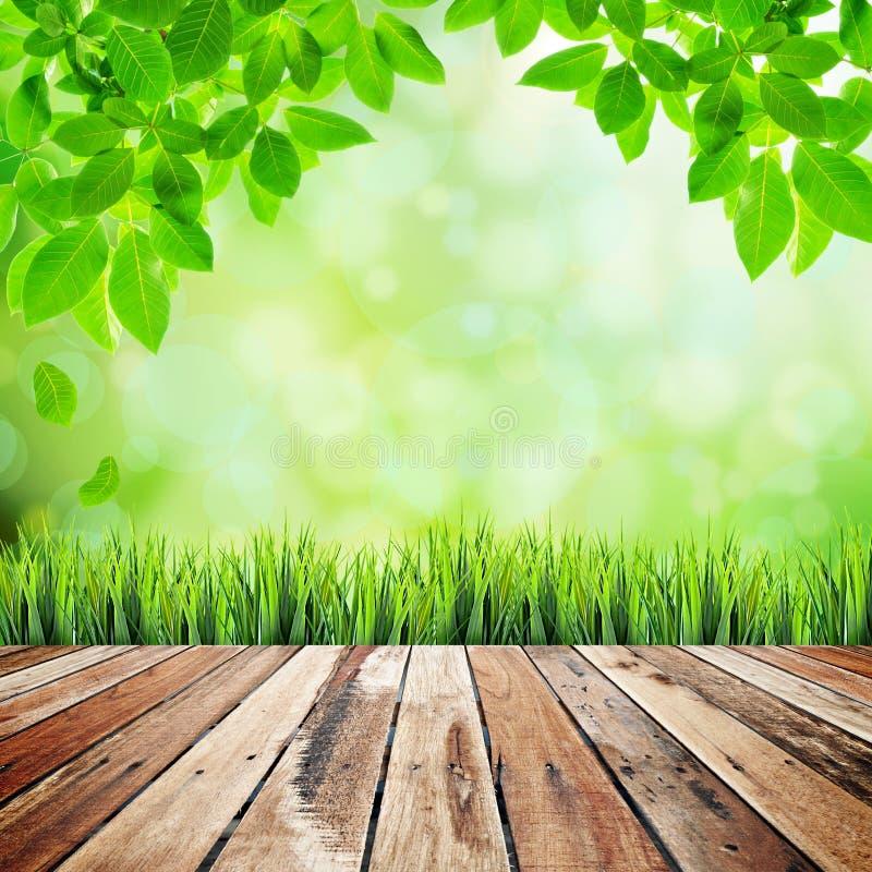 Fondo abstracto natural verde fotografía de archivo