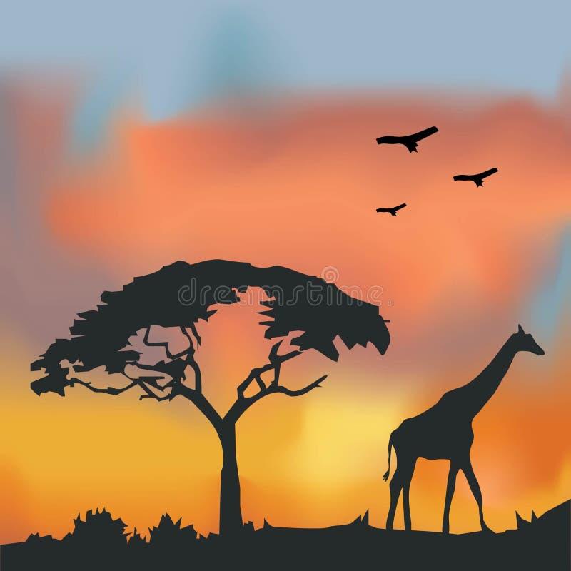Fondo africano de la fauna imagen de archivo libre de regalías