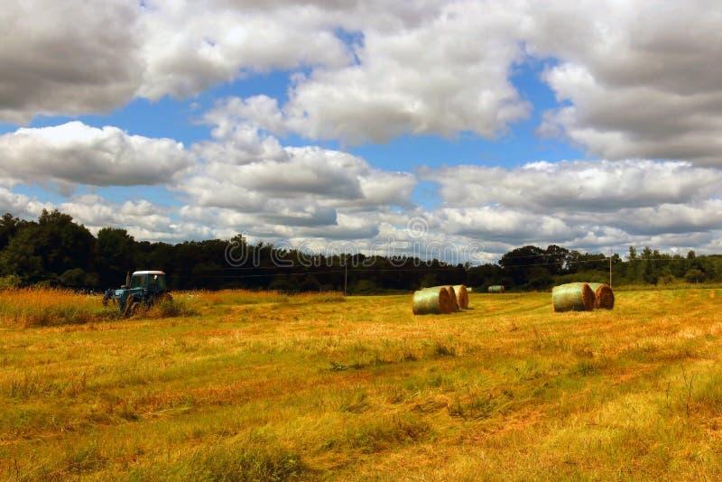 Fondo agricolo e vita rurale al concetto di estate fotografia stock libera da diritti