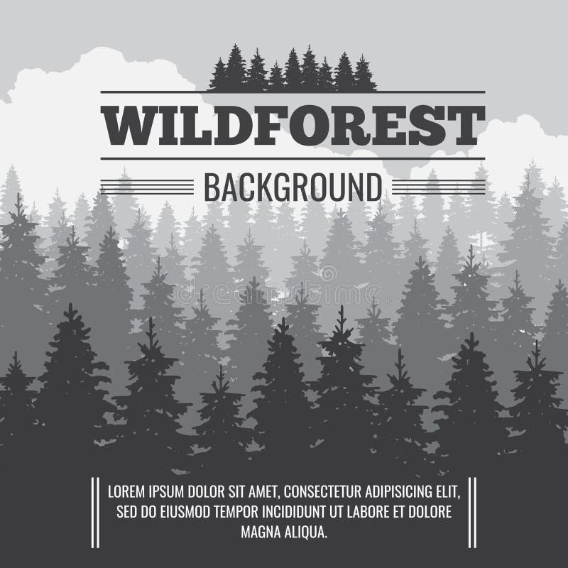 Fondo all'aperto della natura di vettore conifero selvaggio dell'abetaia illustrazione vettoriale