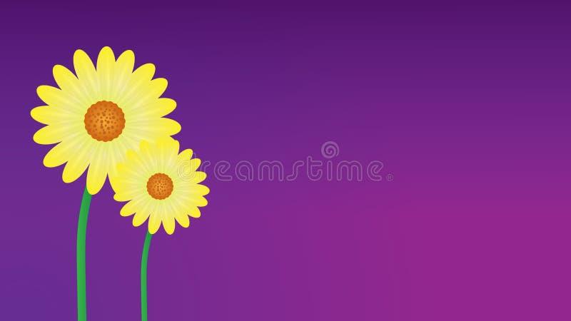 fondo amarillo de la flor de la margarita libre illustration