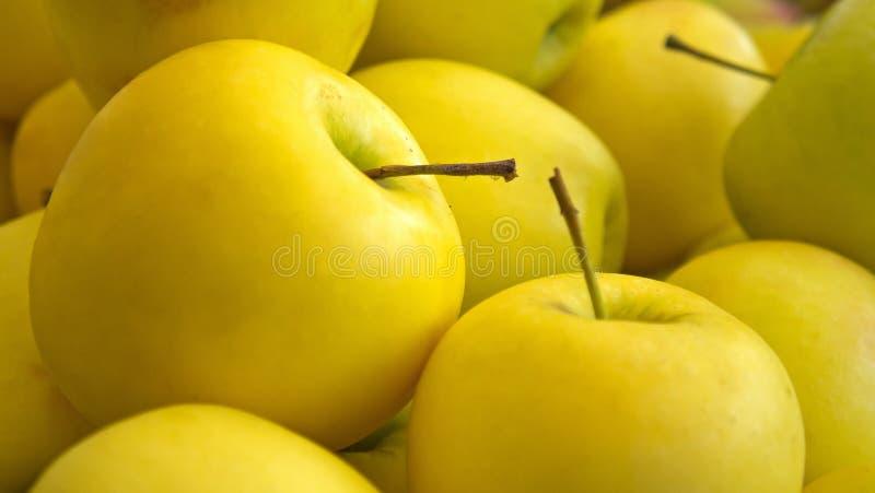 Fondo amarillo de las manzanas imagen de archivo libre de regalías