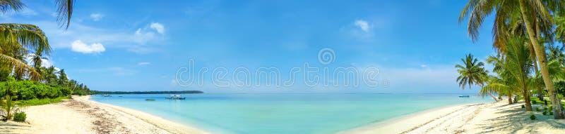 Fondo ancho del mar exótico claro con la playa arenosa y las palmas fotografía de archivo