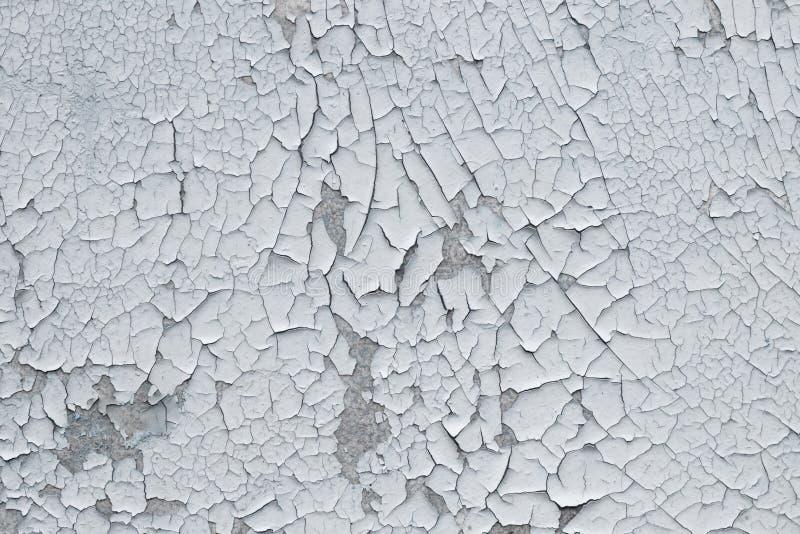 Fondo approssimativo per i progettisti La struttura di vecchia pittura bianca incrinata immagine stock