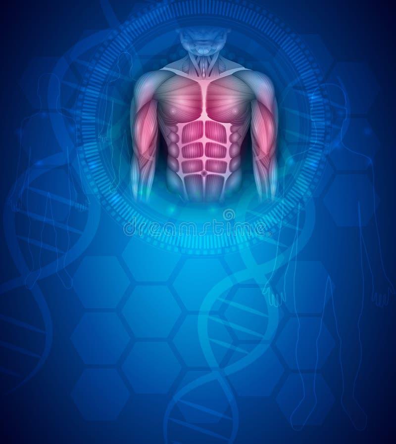 Fondo apto del azul de la salud del cuerpo stock de ilustración