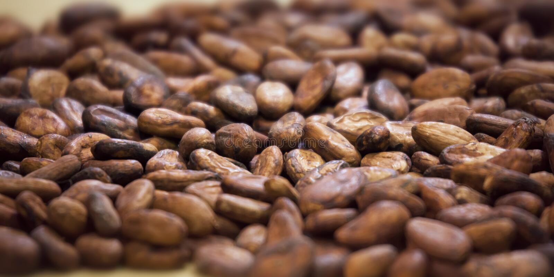 Fondo aromatico delle fave di cacao fotografia stock