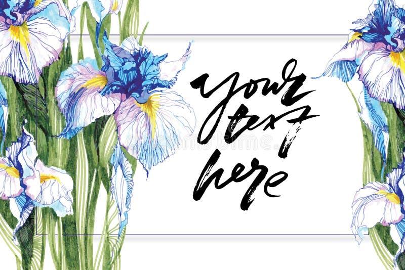 Fondo artístico dibujado mano con el espacio de la copia Adorno botánico a mano Flores azules dibujadas marcador del iris para lo libre illustration