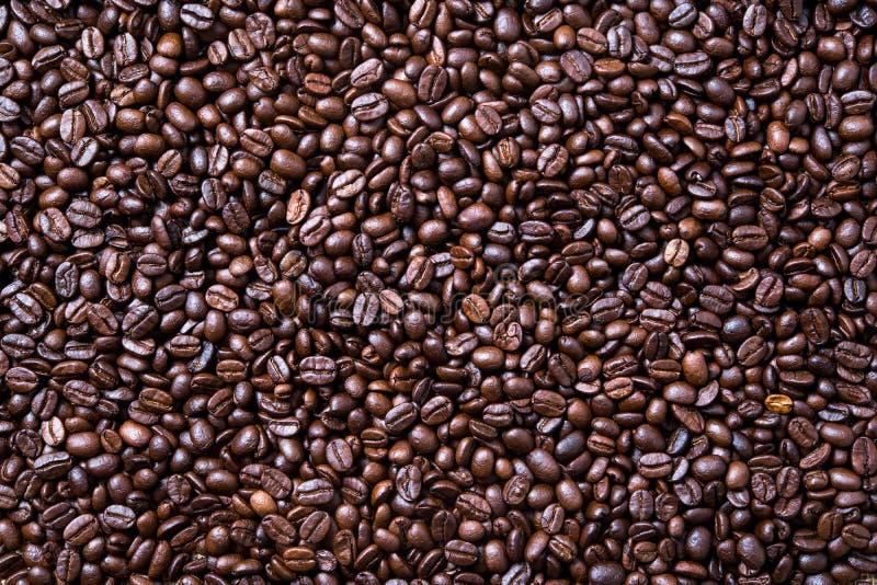 Fondo asado de los granos de café fotografía de archivo libre de regalías