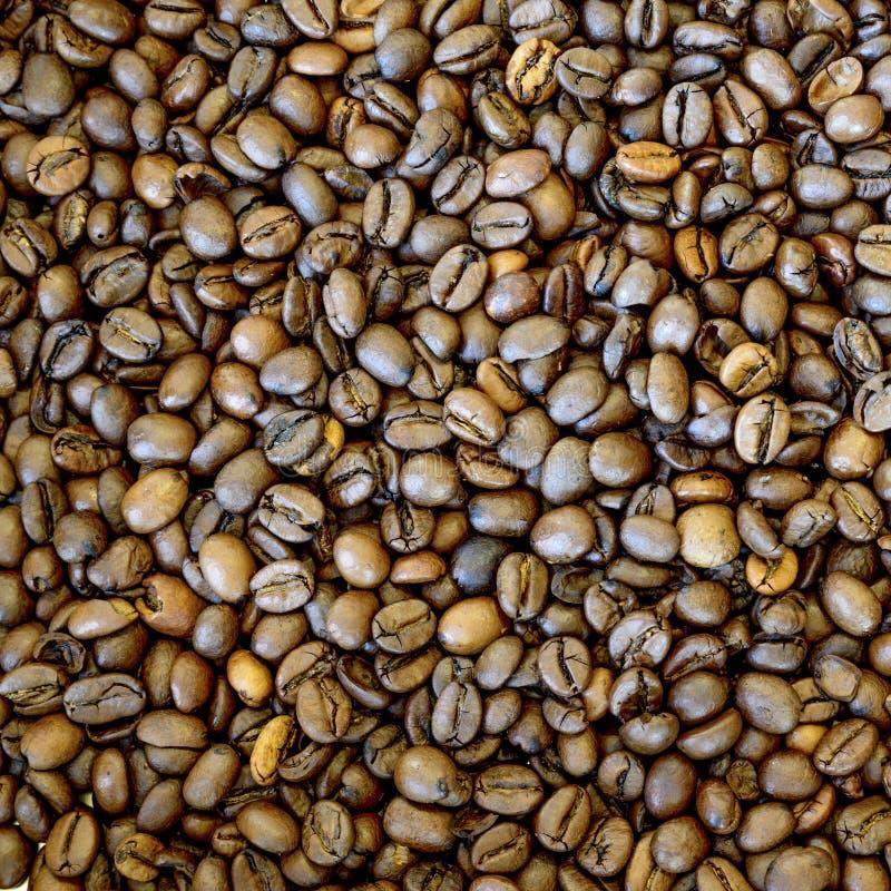 Fondo asado de los granos de caf? imagenes de archivo