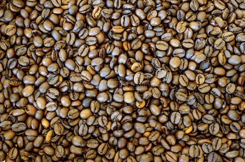 Fondo asado de los granos de caf? imagen de archivo libre de regalías