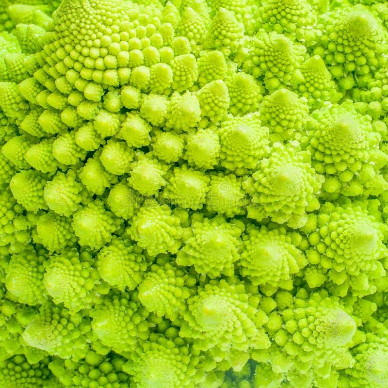 Fondo ascendente cercano del fractal de la textura del bróculi fotografía de archivo