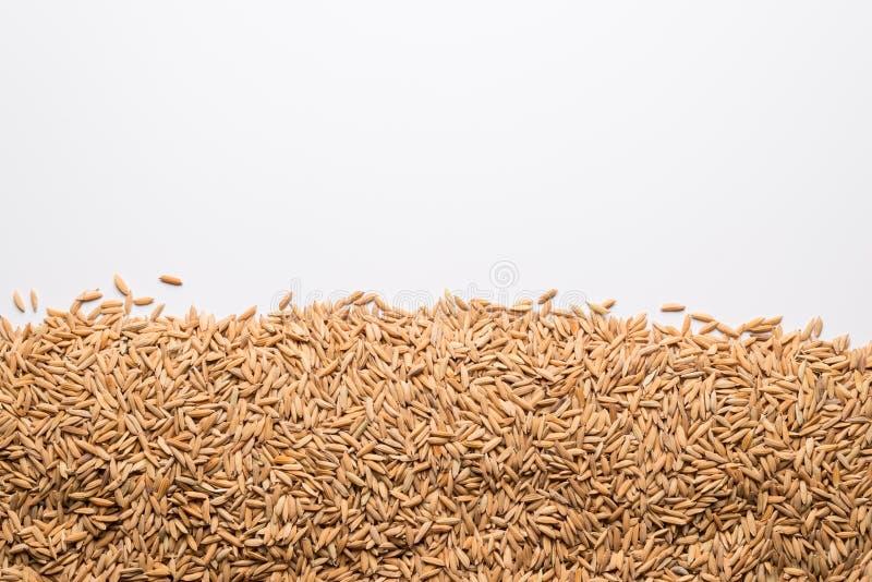 Fondo ascendente cerrado del arroz de arroz de Brown foto de archivo