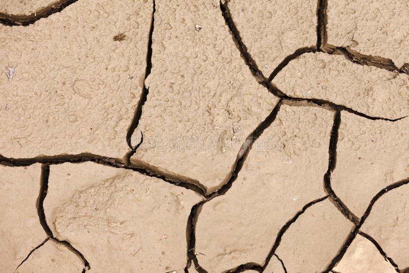 Fondo asciutto incrinato di concetto di siccità della terra immagine stock libera da diritti