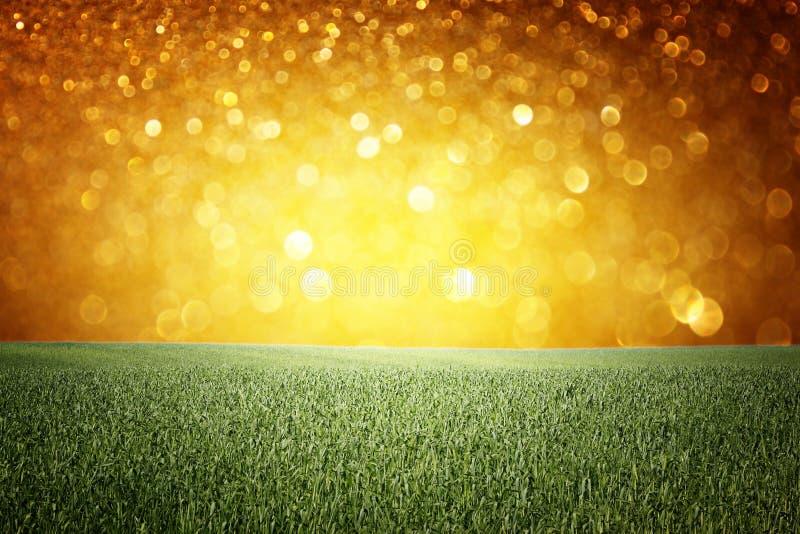 Fondo astratto delle luci dorate. o fondo di estate delle luci di scintillio immagine stock