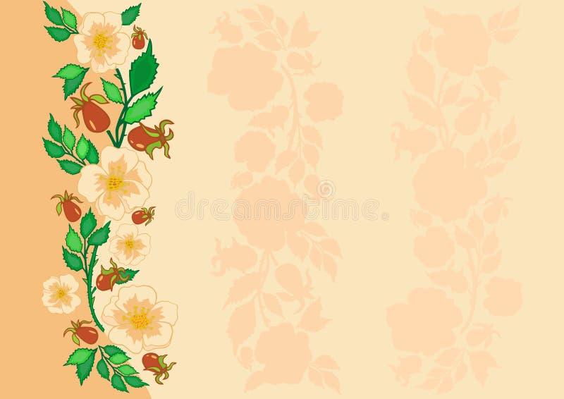 Fondo astratto delle rose illustrazione di stock