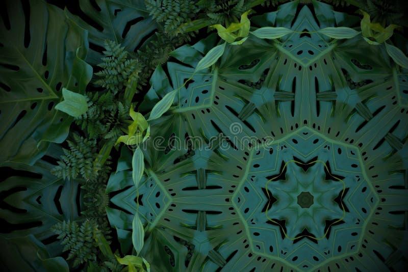 Fondo astratto di verde smeraldo, modello tropicale delle foglie con immagine stock