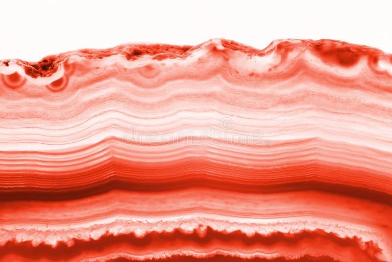 Fondo astratto - minerale rosso della fetta di sezione trasversale dell'agata fotografie stock libere da diritti