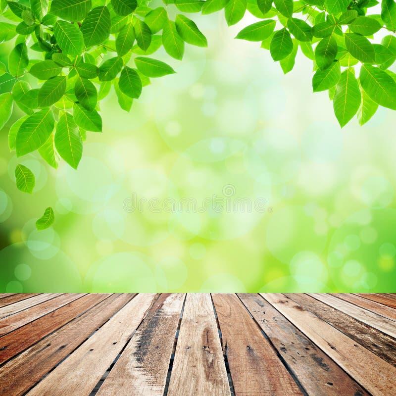 Fondo astratto naturale verde fotografia stock libera da diritti