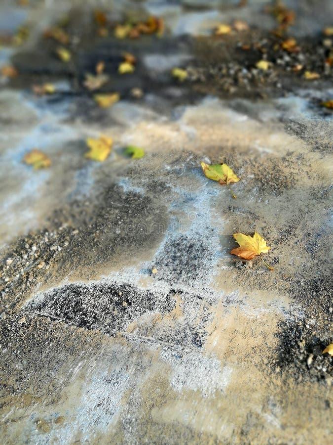Fondo astratto, pavimentazione della via in autunno fotografia stock