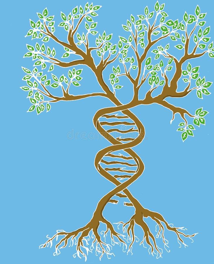 Fondo azul del ?rbol gen?tico ilustración del vector