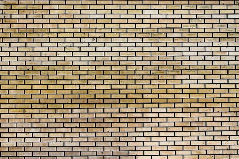 Fondo beige del extracto de la pared de ladrillo fotografía de archivo libre de regalías