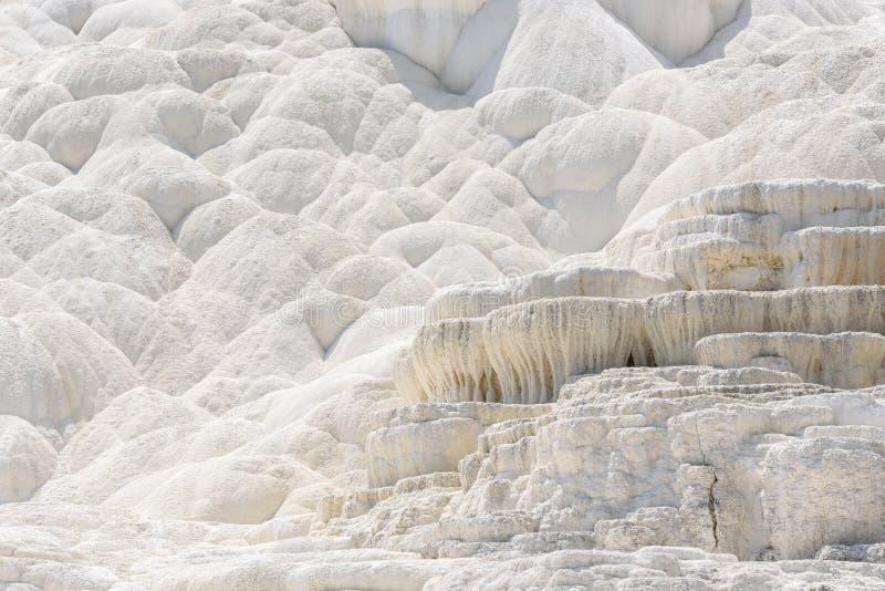 Fondo bianco astratto di struttura Terrazzo del travertino, Mammoth Hot Springs, Yellowstone fotografia stock libera da diritti