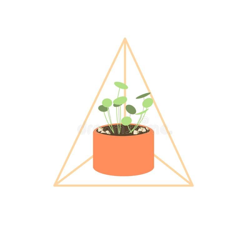 Fondo bianco con la pianta immagini stock