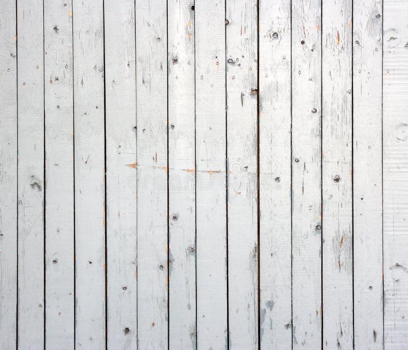 Fondo bianco della plancia di legno dipinta sopravvissuta. immagini stock