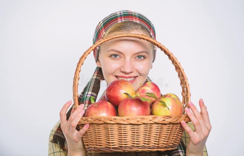 Fondo bianco di stile del giardiniere della ragazza della mela rustica della tenuta Sanit? e nutrizione della vitamina Mela perfe immagine stock