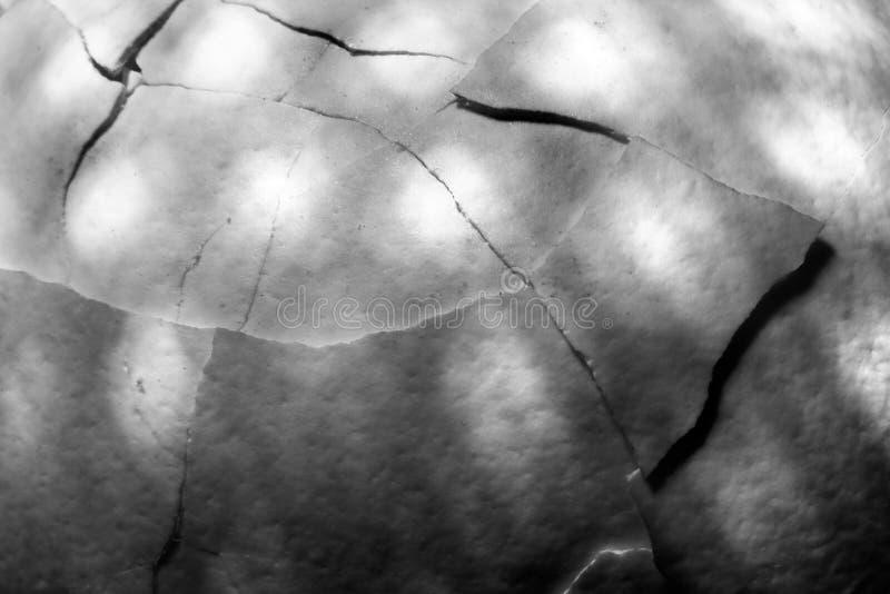 Fondo in bianco e nero astratto del guscio d'uovo incrinato immagini stock
