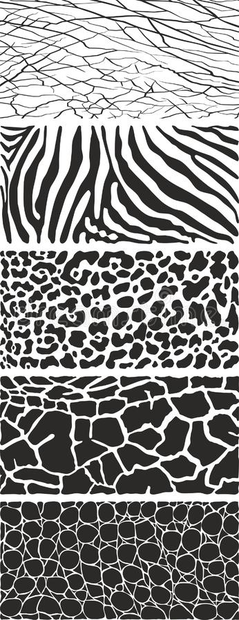 Fondo in bianco e nero della fauna selvatica animale immagini stock