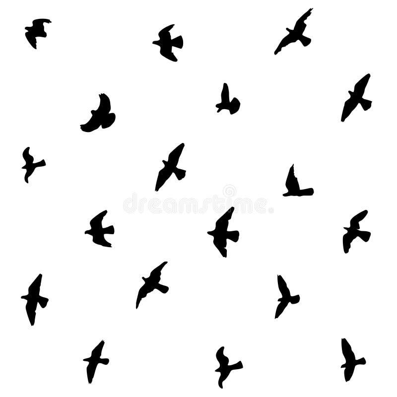 Fondo in bianco e nero senza cuciture delle siluette dei piccioni di volo illustrazione vettoriale