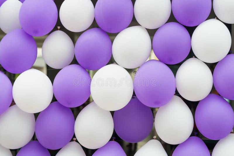 Fondo Bianco-porpora di fila del pallone immagine stock libera da diritti