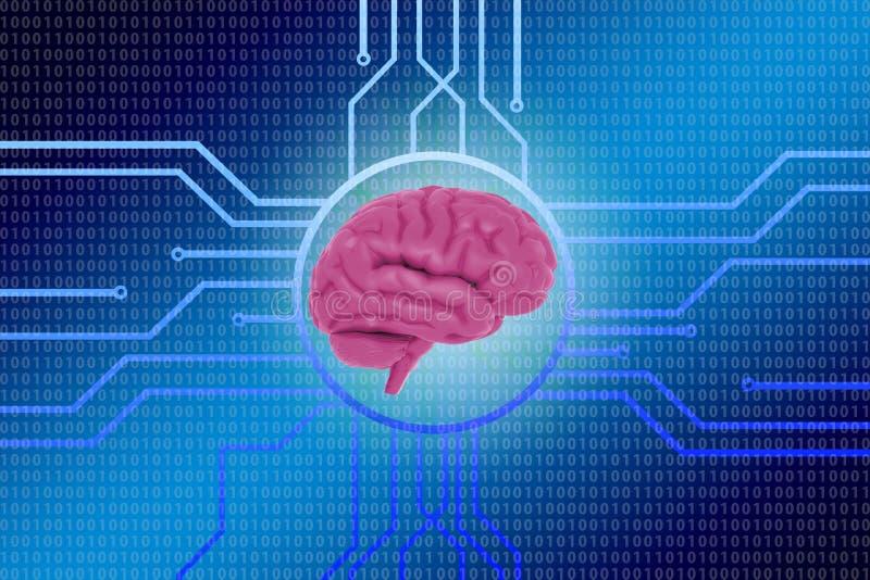 Fondo binario digital de la información del circuito electrónico del ordenador del cerebro humano ilustración del vector