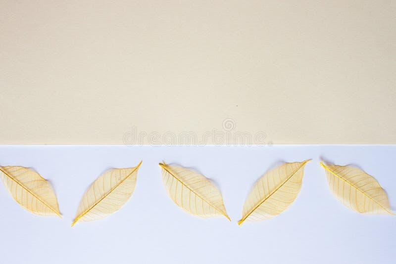 Fondo blanco amarillo en colores pastel imagenes de archivo