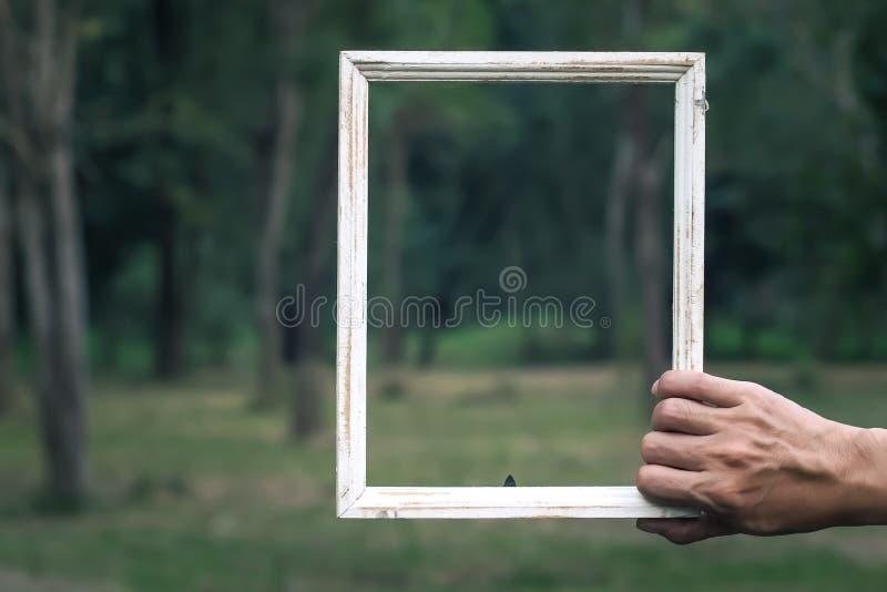 Fondo blanco de la idea del concepto de la naturaleza del verde de la falta de definición del marco de madera del vintage del est fotos de archivo libres de regalías