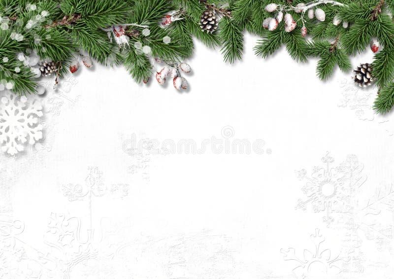 Fondo blanco de la Navidad con las decoraciones, el acebo y las ramas foto de archivo