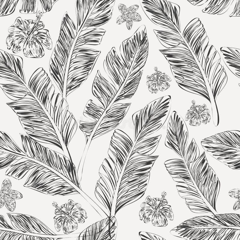 Fondo blanco de las hojas de palma del plumeria negro del hibisco inconsútil stock de ilustración