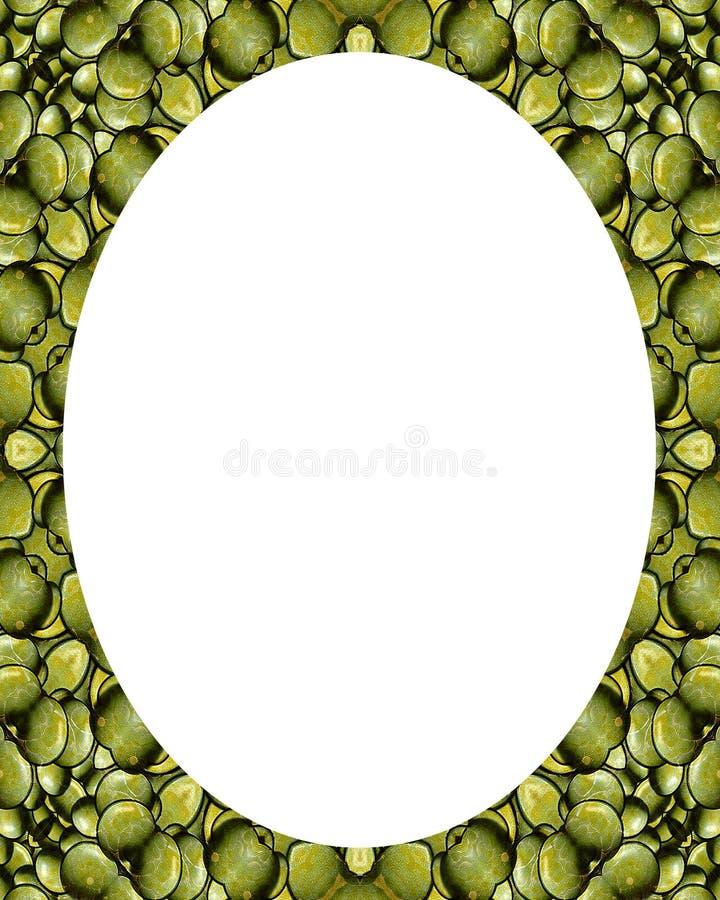 Fondo blanco del marco del círculo con las fronteras adornadas stock de ilustración
