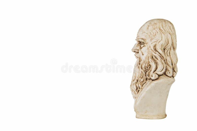 Fondo blanco lateral de Leonardo da Vinci fotos de archivo libres de regalías