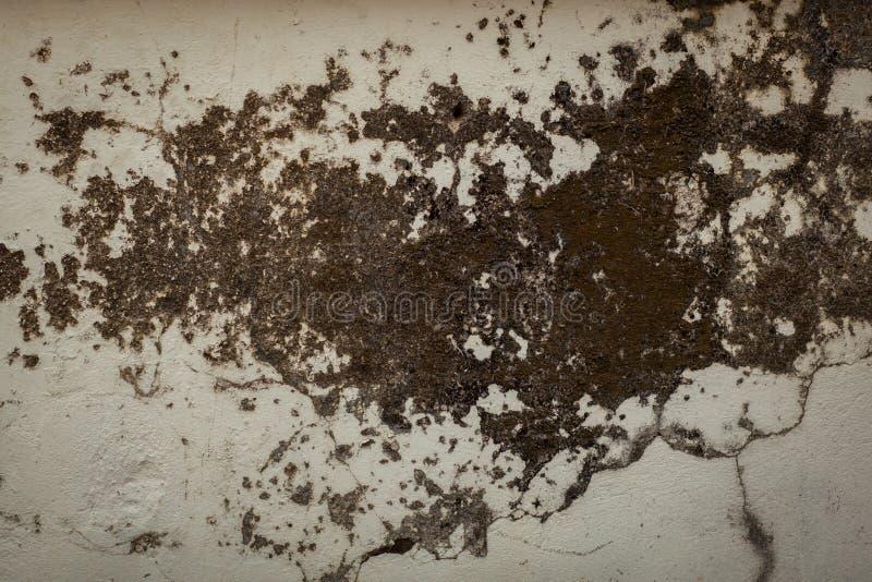 Fondo blanco sucio de la pared fotos de archivo