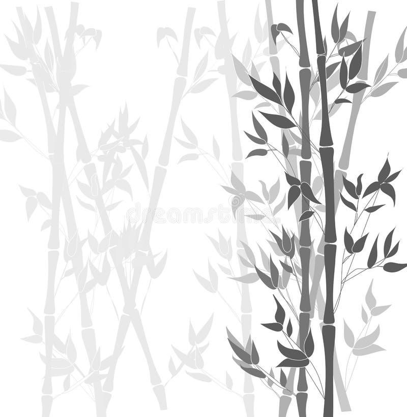 Fondo blanco y negro de bambú del vector, siluetas de las plantas libre illustration