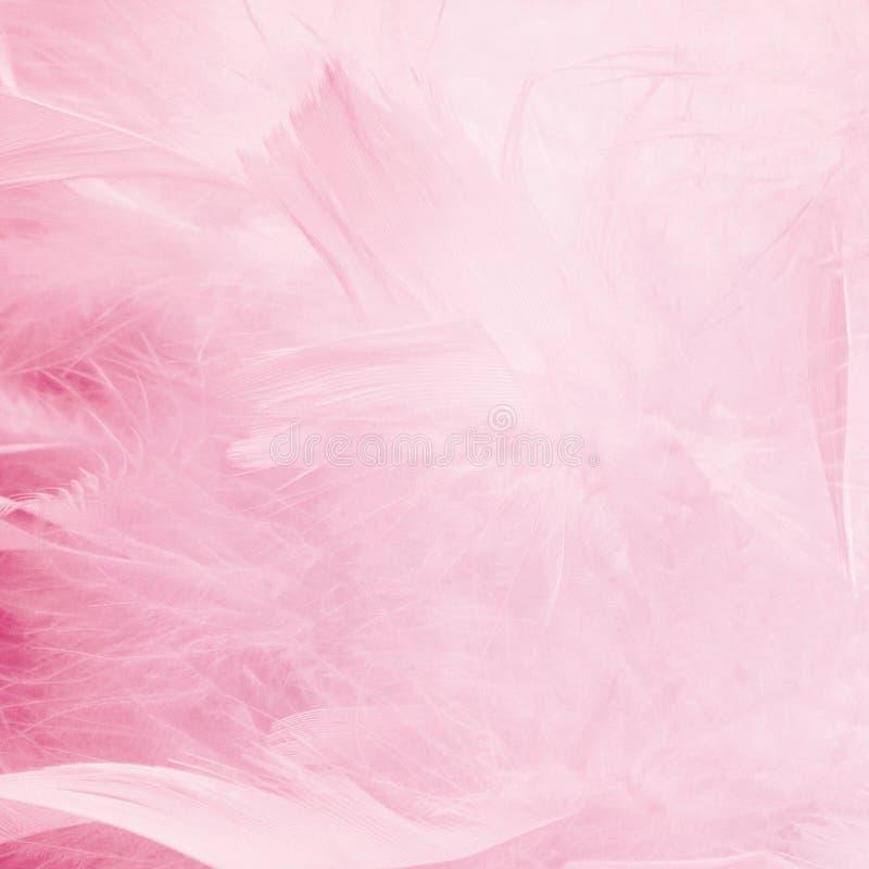 Fondo blu astratto delle piume di tono Struttura della Boemia d'annata del pastello di stile della piuma di progettazione lanugin fotografia stock