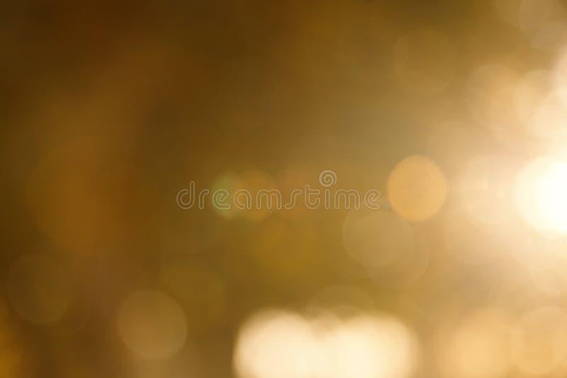 Fondo borroso extracto de la naturaleza ?rboles forestales, d?a soleado, resplandor del sol, bokeh Contexto Defocused para su dis imagenes de archivo