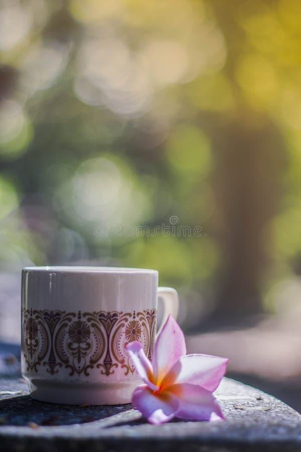 Fondo borroso, florero con café de las tazas en cafetería, imagen de archivo