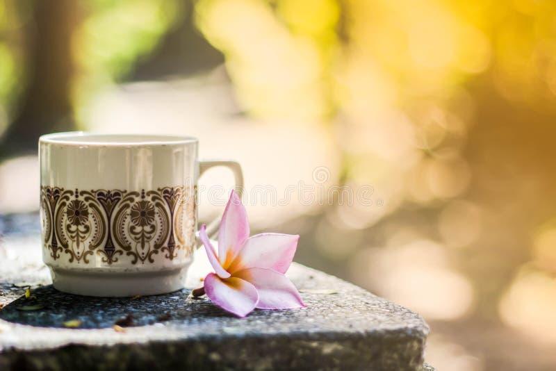 Fondo borroso, florero con café de las tazas en cafetería, imagen de archivo libre de regalías